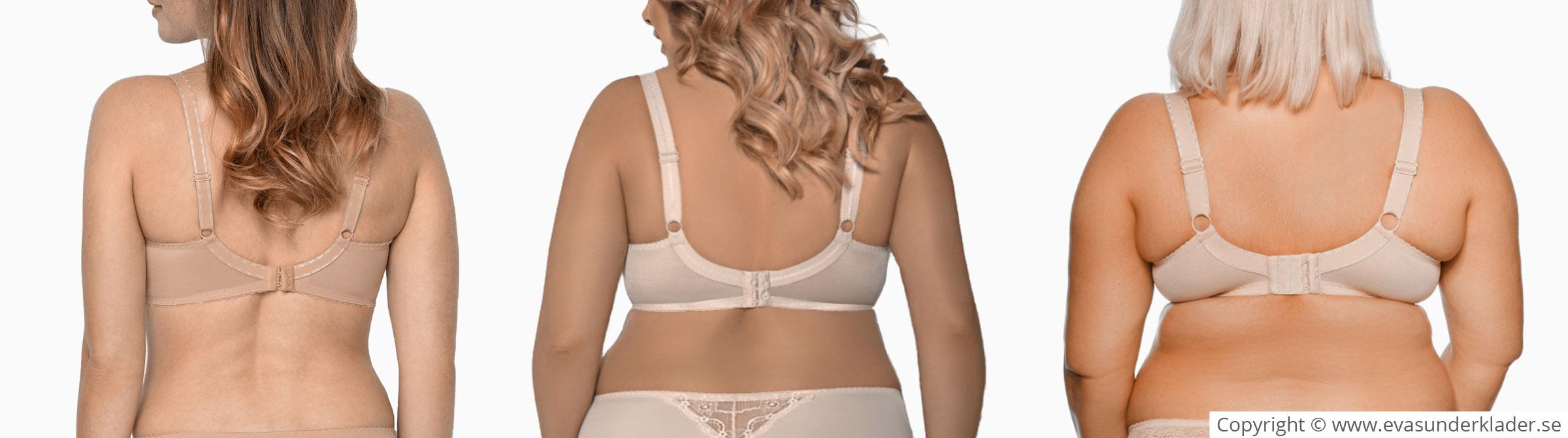 ประเภทของร่างกายแบบต่างๆ ผอม,อ้วน/อวบแต่กระชับ/เนื้อนิ่มเหลว ภาพกลางคือคนที่มีขนาดรอบลำตัวที่ใหญ่ที่สุด!