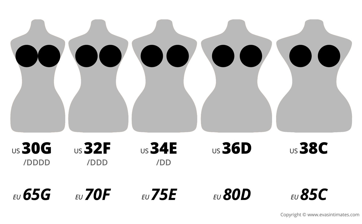 Bra cup sizes and their actual volume