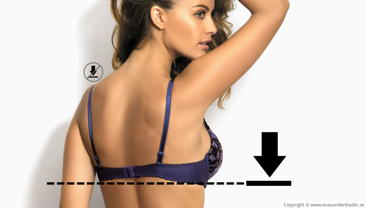 The weight of the bust should be supported by the bra band, not the shoulder straps.