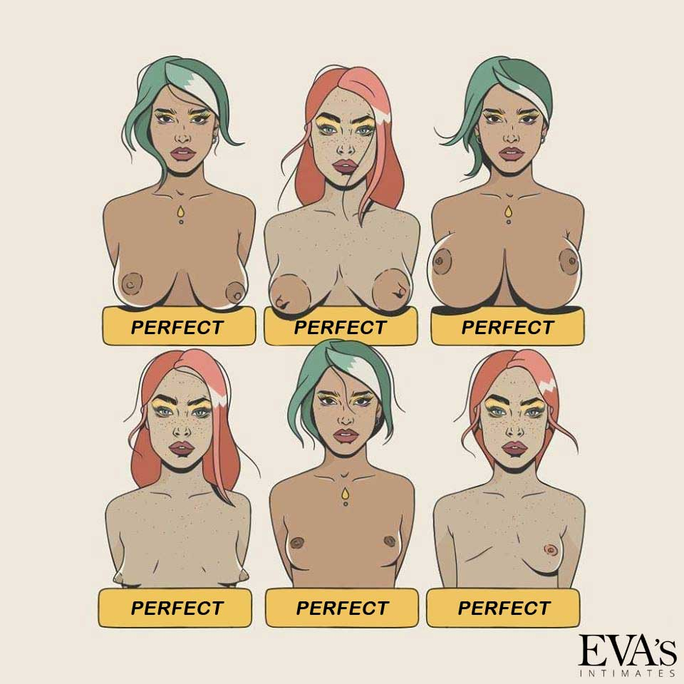 Perfect breasts come in all shapes and sizes.